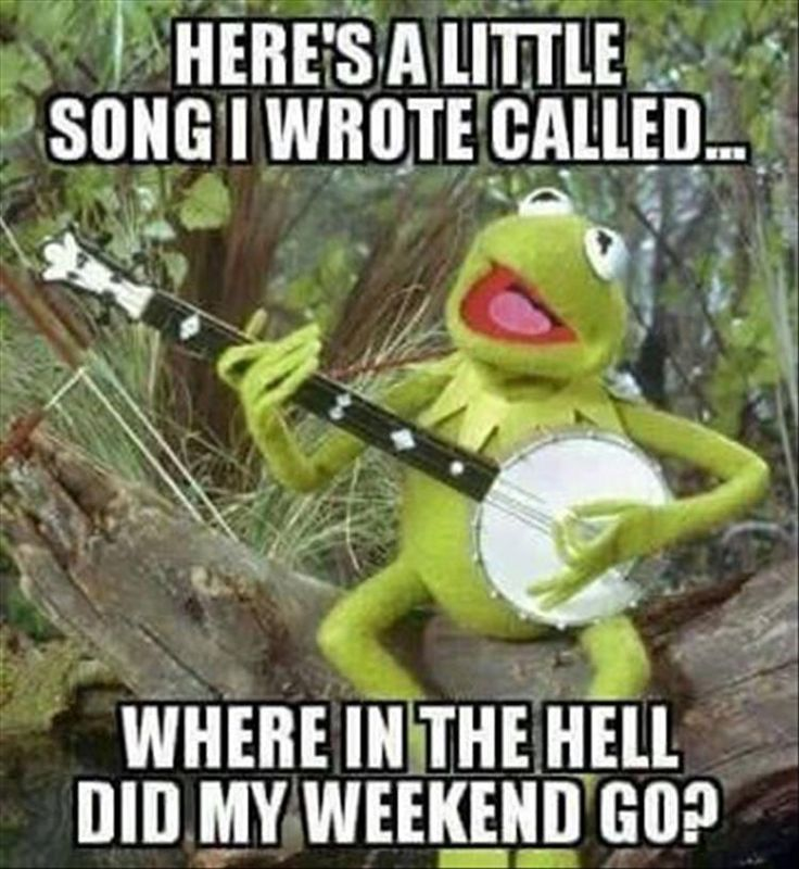 Meme of a Frog playing guitar